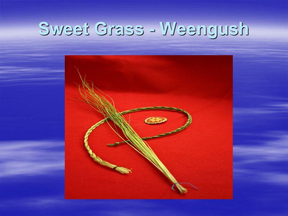 Sweet Grass - Weengush