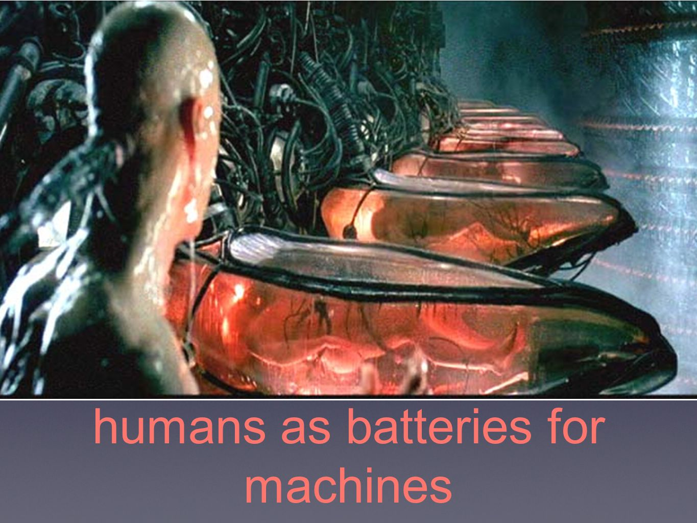 humans as batteries for machines