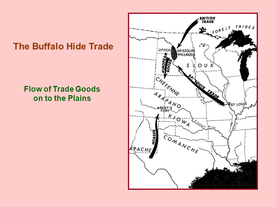 Flow of Trade Goods on to the Plains The Buffalo Hide Trade