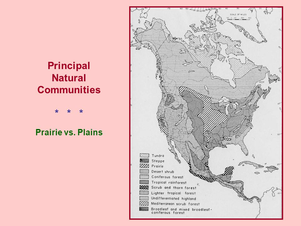 Principal Natural Communities Prairie vs. Plains * * *
