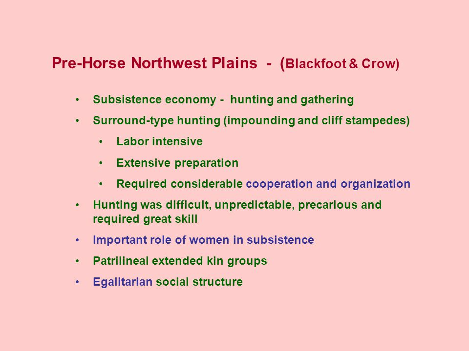Pre-Horse Northwest Plains - ( Blackfoot & Crow) Subsistence economy - hunting and gathering Surround-type hunting (impounding and cliff stampedes) Labor intensive Extensive preparation Required considerable cooperation and organization Hunting was difficult, unpredictable, precarious and required great skill Important role of women in subsistence Patrilineal extended kin groups Egalitarian social structure