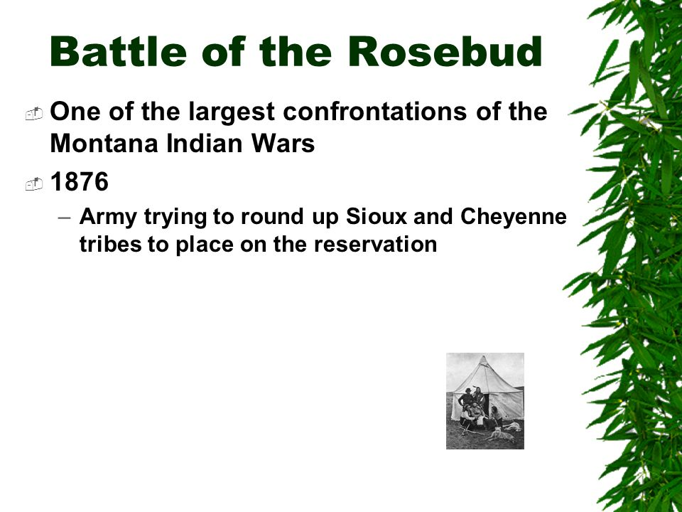 Battle of the Little Bighorn  Captain Benteen –Ordered to search the valleys for Indians  Major Reno –Ordered to charge across the river and attack the village  General Custer –Will advance to the higher ground to the right and attack the village from the rear