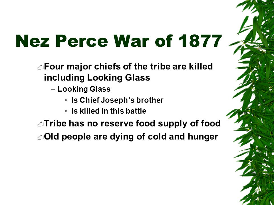Nez Perce War of 1877  Four major chiefs of the tribe are killed including Looking Glass –Looking Glass Is Chief Joseph's brother Is killed in this b