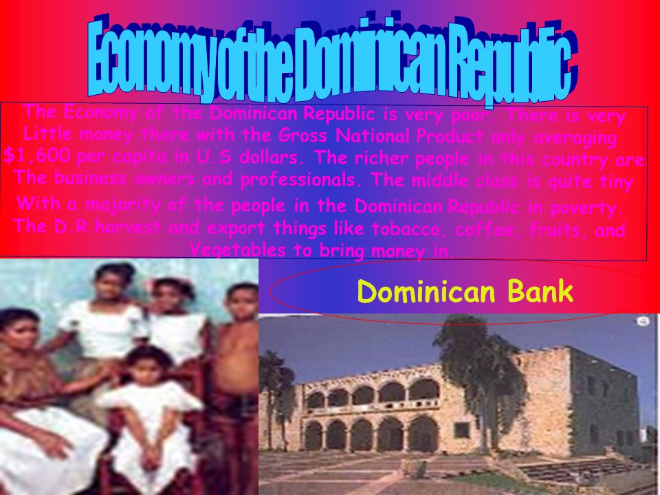 Dominican Repepublic's government is a federal republic,made up a President, a Senate, a National Congress, a Supreme Court and multiple branchesof different Depatements such as the Army and Civil Defense.