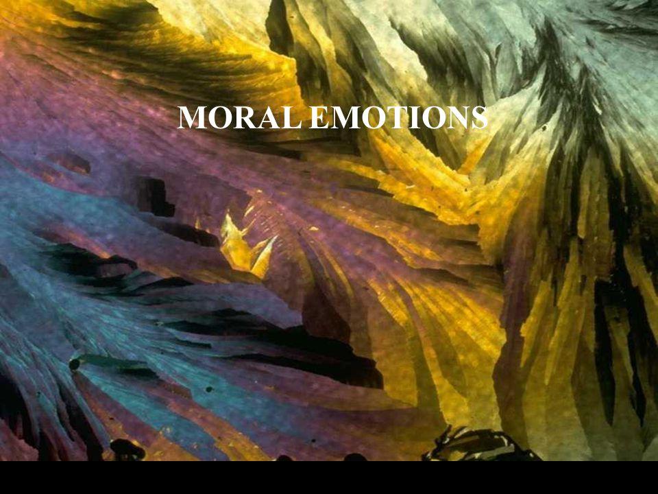 MORAL EMOTIONS