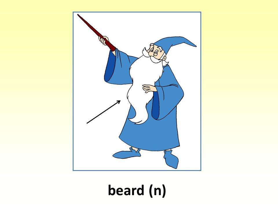 beard (n)