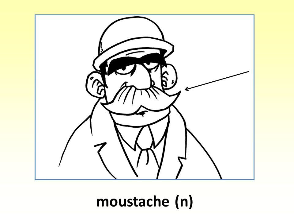 moustache (n)