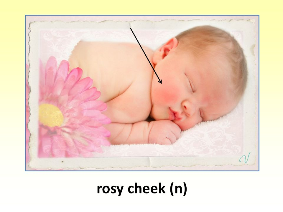 rosy cheek (n)