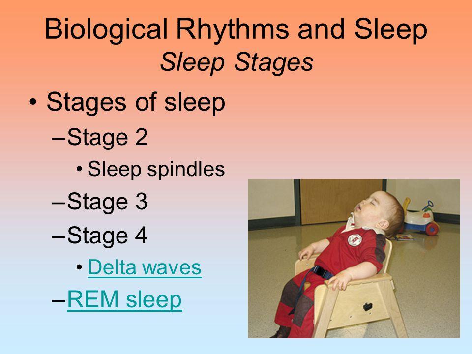 Sleep Disorders Sleep disorders –InsomniaInsomnia –NarcolepsyNarcolepsy –Sleep apneaSleep apnea –Night terrorsNight terrors –Sleepwalking/ sleeptalking