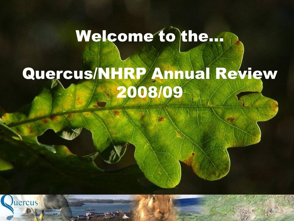 Welcome to the… Quercus/NHRP Annual Review 2008/09