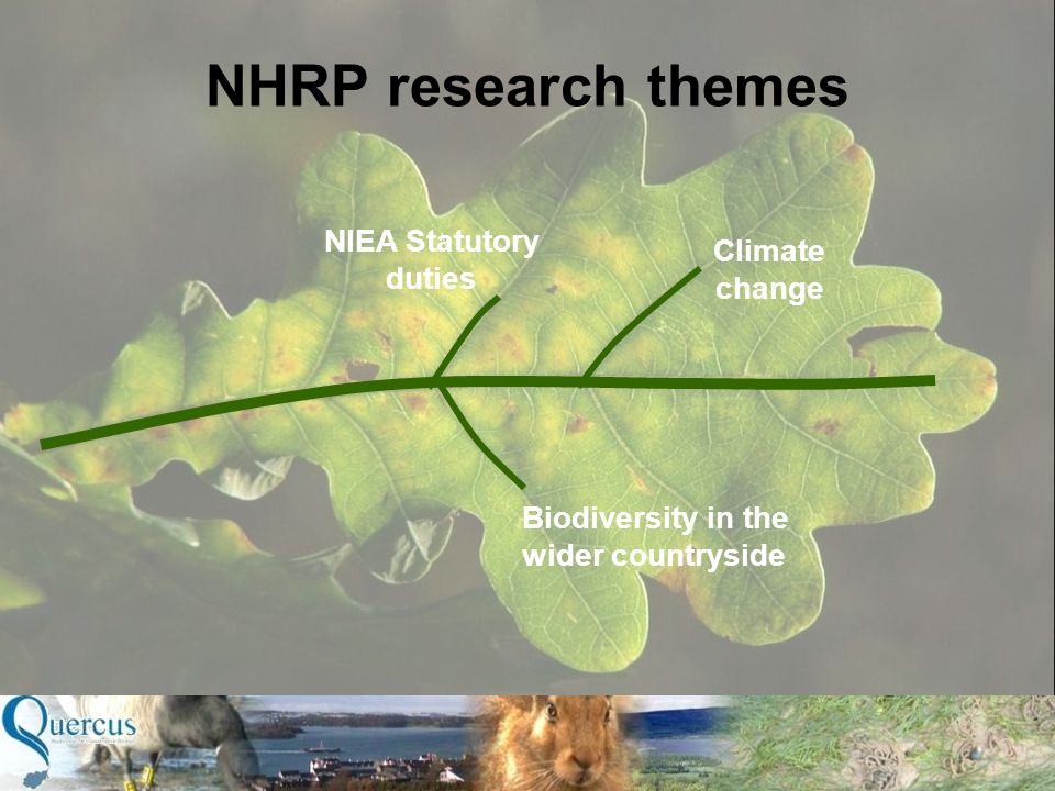 NIEA Statutory duties Biodiversity in the wider countryside Climate change NHRP research themes