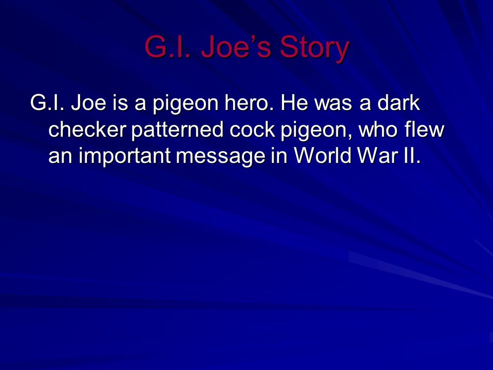G.I. Joe, A Pigeon Hero By, Tayler, Savanna, Ashley and Erica