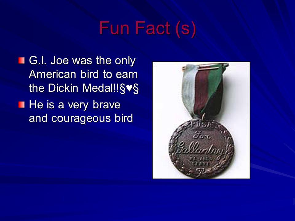 G.I. Joe's Story G.I.