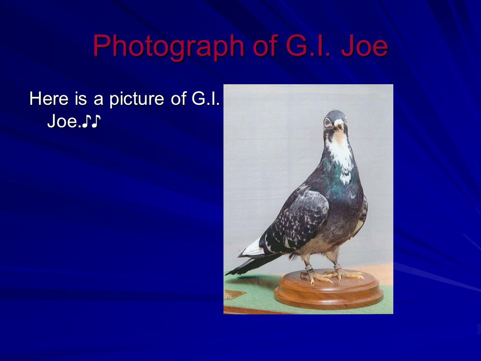 Fun Fact (s) G.I.