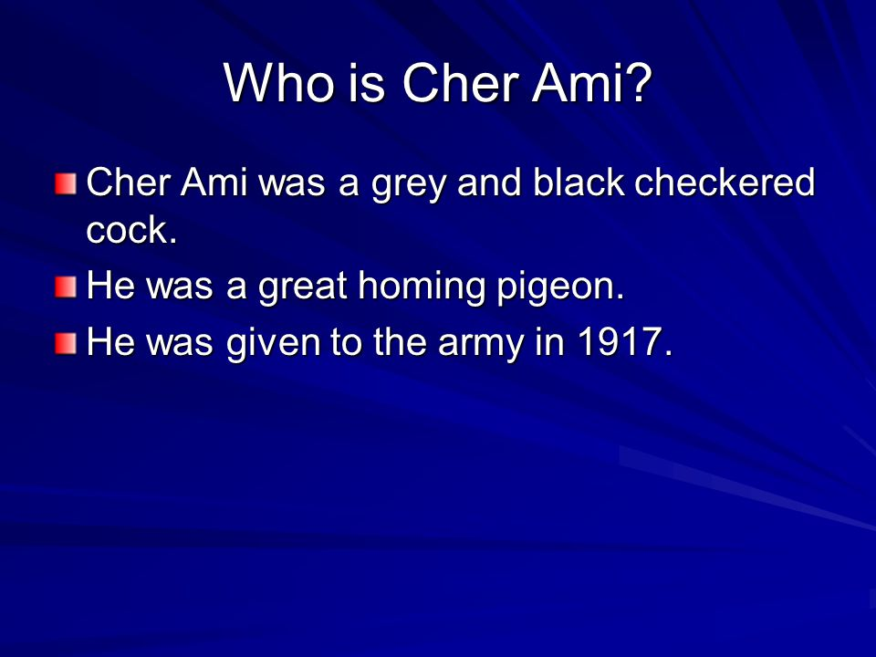 Cher Ami By Morgan and Katie