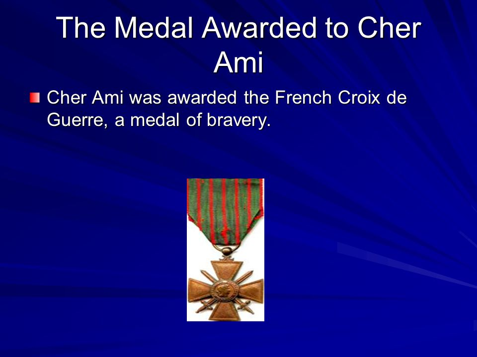 Cher Ami's Arrival When Cher Ami arrived he was wounded in the torso and the leg with the message on it.