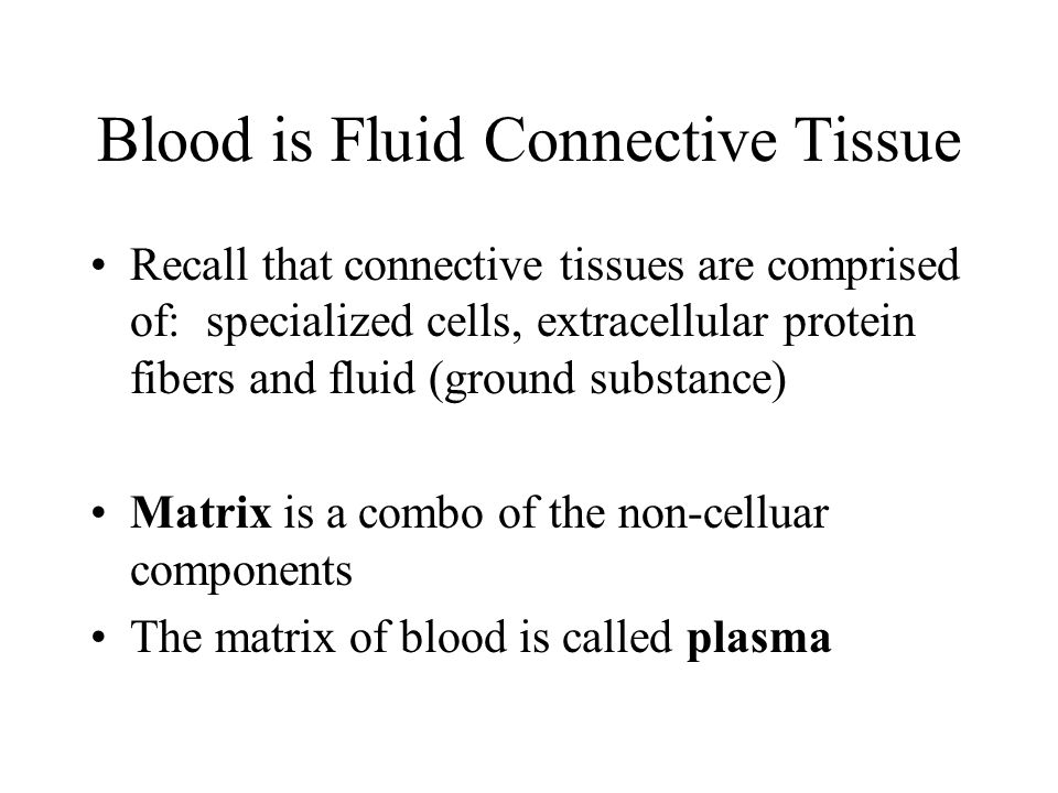 Blood is Fluid Connective Tissue Recall that connective tissues are comprised of: specialized cells, extracellular protein fibers and fluid (ground su