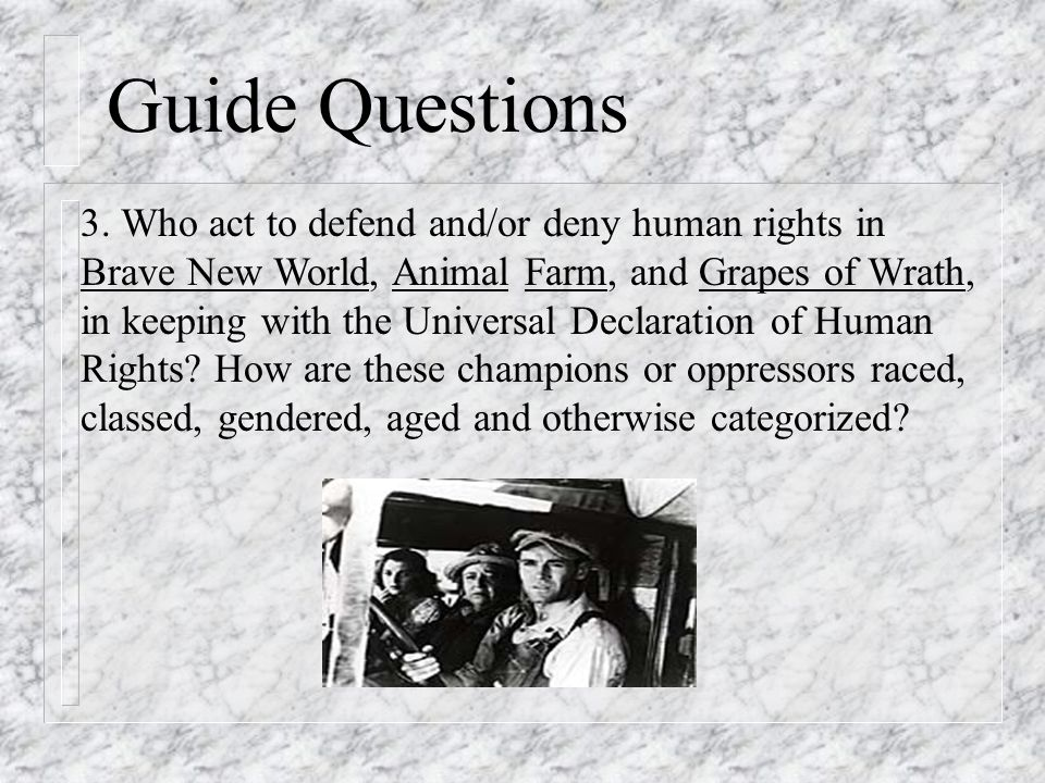 Guide Questions 3.