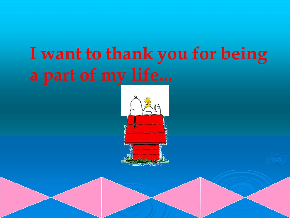 I want to thank you for being a part of my life...
