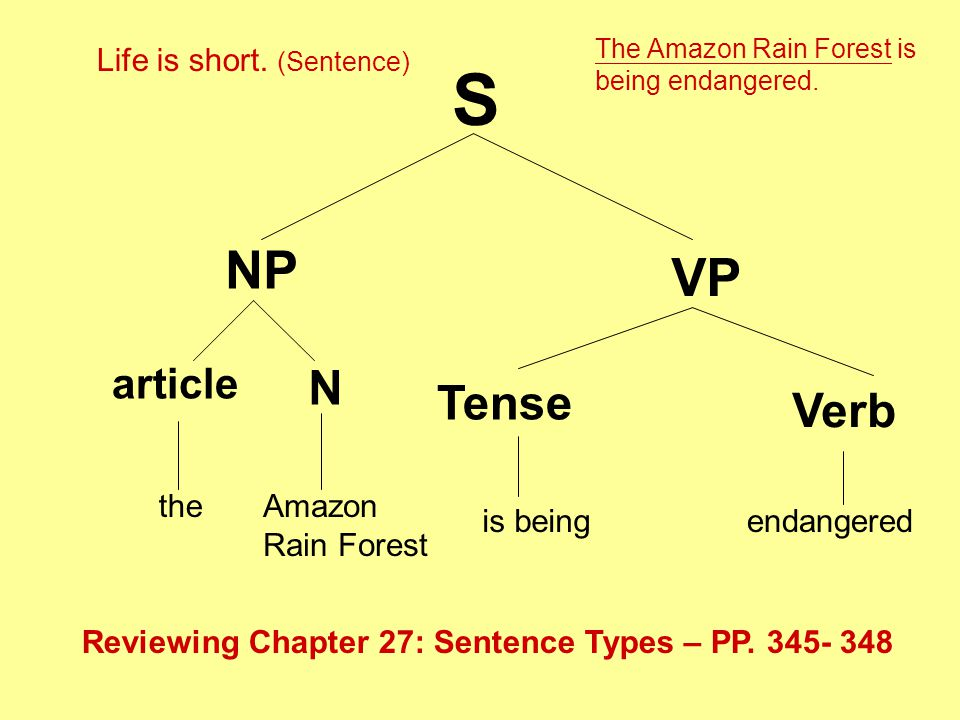 S NP VP the article N Amazon Rain Forest Tense Verb is being endangered Reviewing Chapter 27: Sentence Types – PP.
