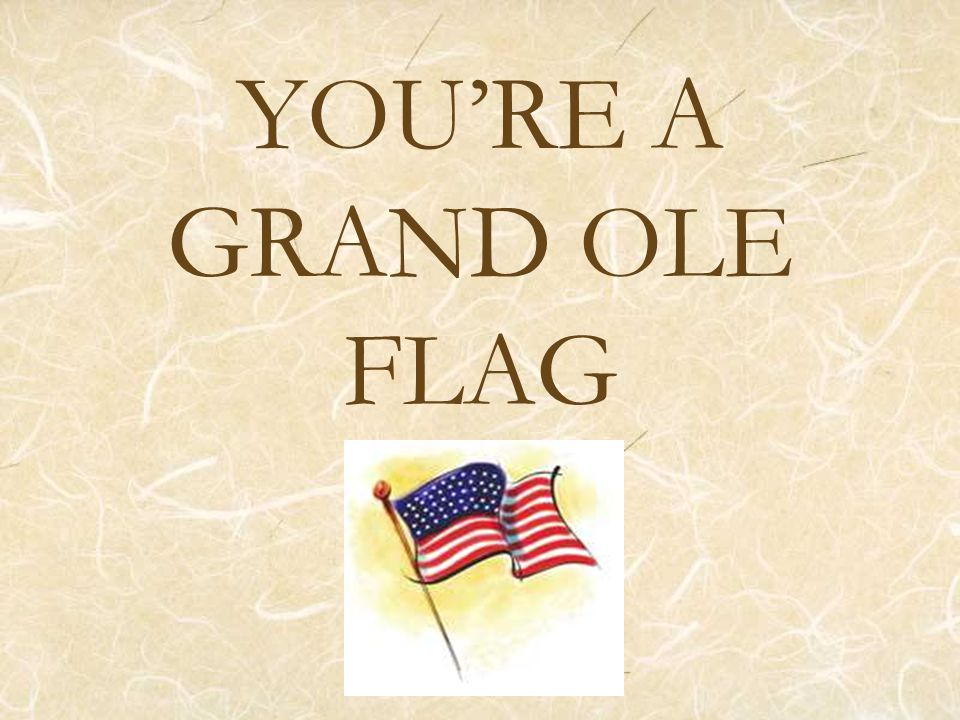 YOU'RE A GRAND OLE FLAG