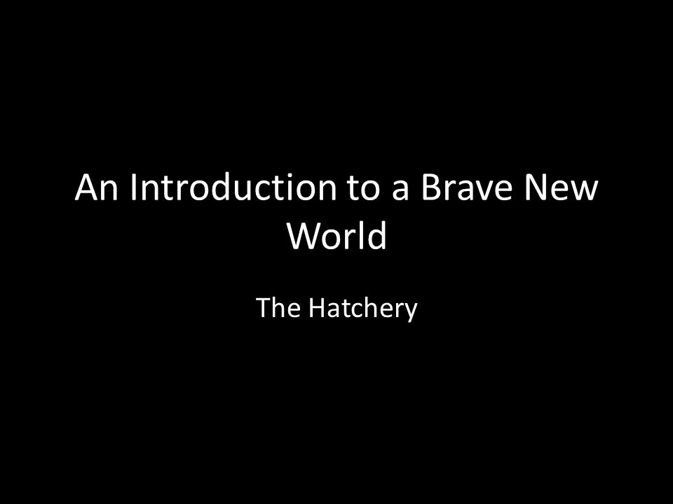 An Introduction to a Brave New World The Hatchery