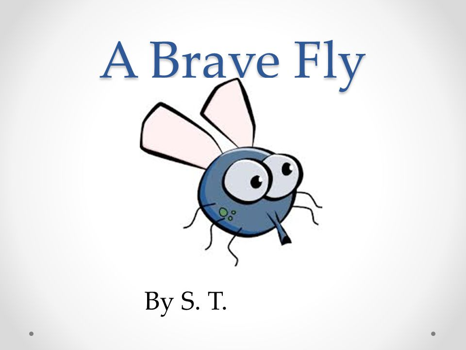 A Brave Fly By S. T.