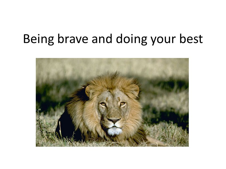 Being brave and doing your best