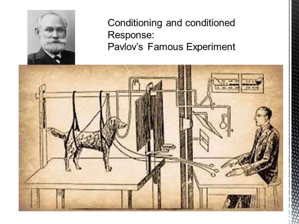 Conditioning and conditioned Response: Pavlov's Famous Experiment