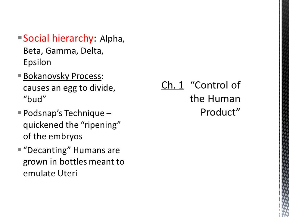 " Social hierarchy: Alpha, Beta, Gamma, Delta, Epsilon  Bokanovsky Process: causes an egg to divide, ""bud""  Podsnap's Technique – quickened the ""rip"
