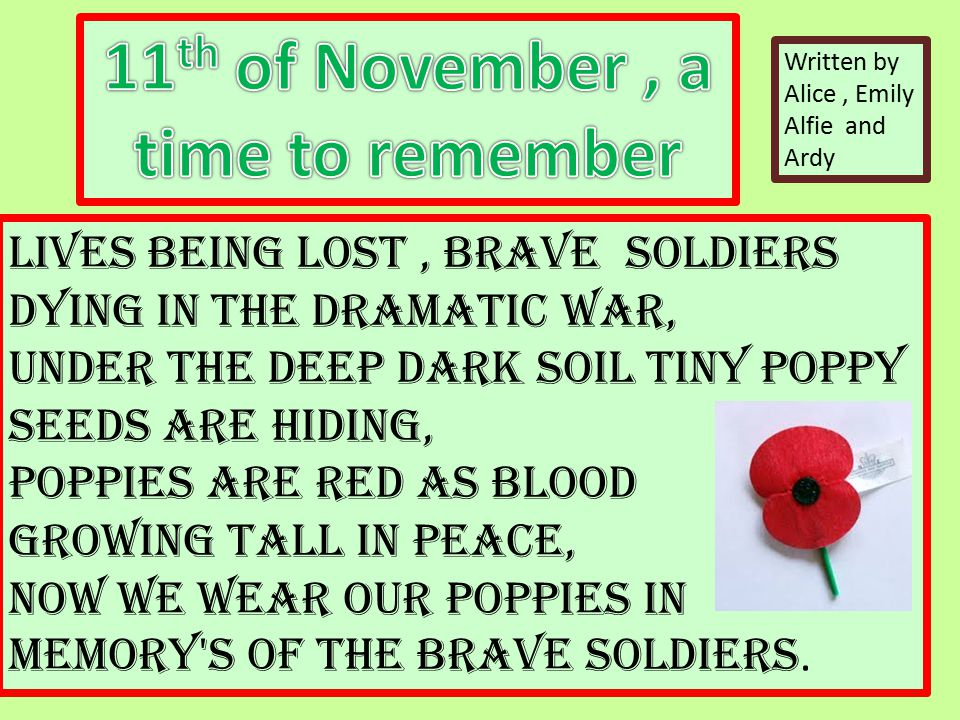 Lives being lost, brave soldiers dying in the dramatic war, Under the deep dark soil tiny poppy seeds are hiding, Poppies are red as blood growing tall in peace, Now we wear our poppies in memory s of the brave soldiers.
