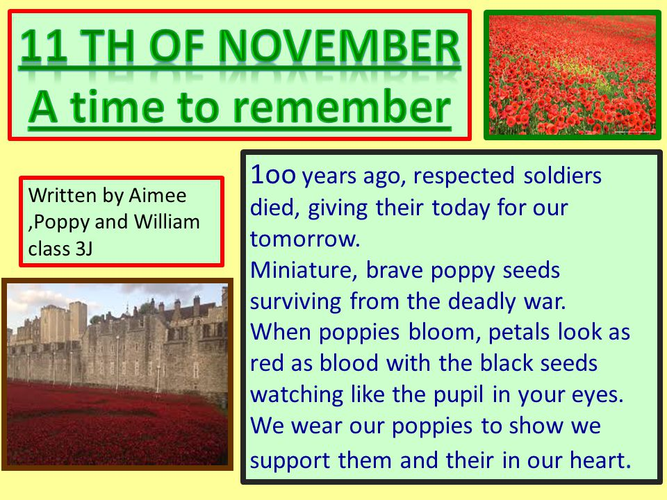 1oo years ago, respected soldiers died, giving their today for our tomorrow. Miniature, brave poppy seeds surviving from the deadly war. When poppies