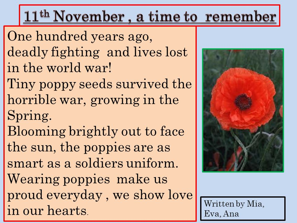 100 years ago, a giant war with thousands of lives lost, the poppy's life changes when time goes by, The delicate poppies spring up in the sunshine giving hope to all, We will never ever forget the soldiers because they died for us.