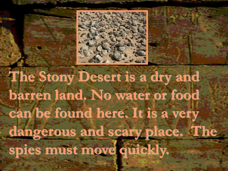The Stony Desert is a dry and barren land.No water or food can be found here.