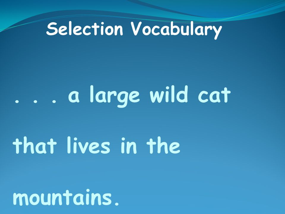 ... a large wild cat that lives in the mountains. Selection Vocabulary