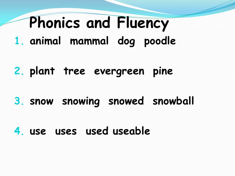 Phonics and Fluency 1. animal mammal dog poodle 2.