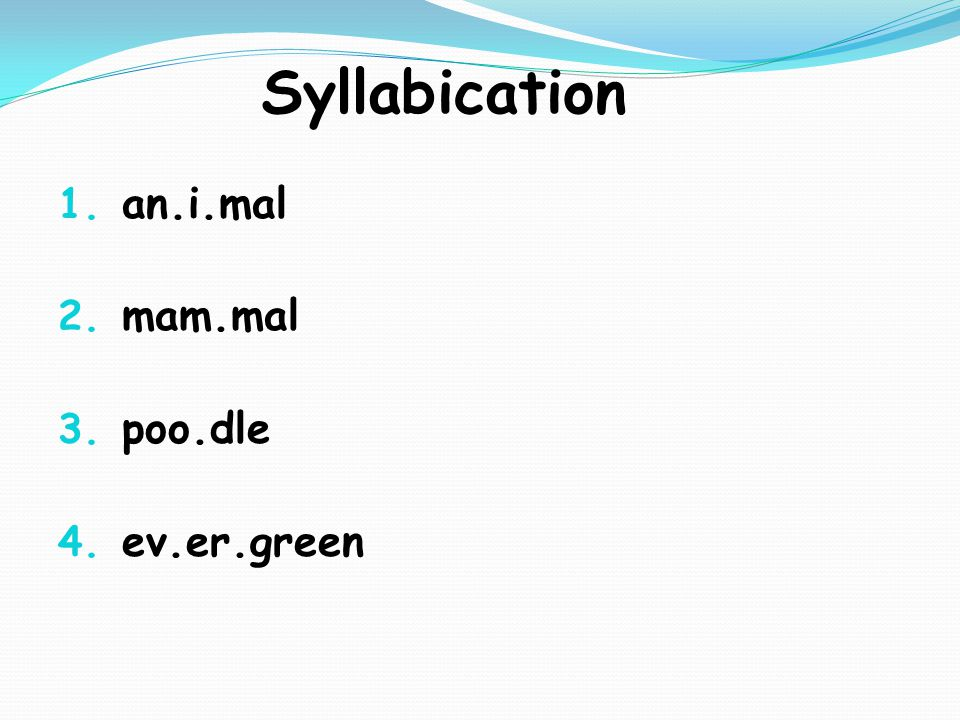 Syllabication 1. an.i.mal 2. mam.mal 3. poo.dle 4. ev.er.green