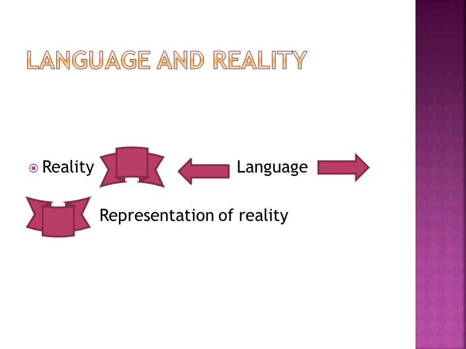  Reality Language Representation of reality