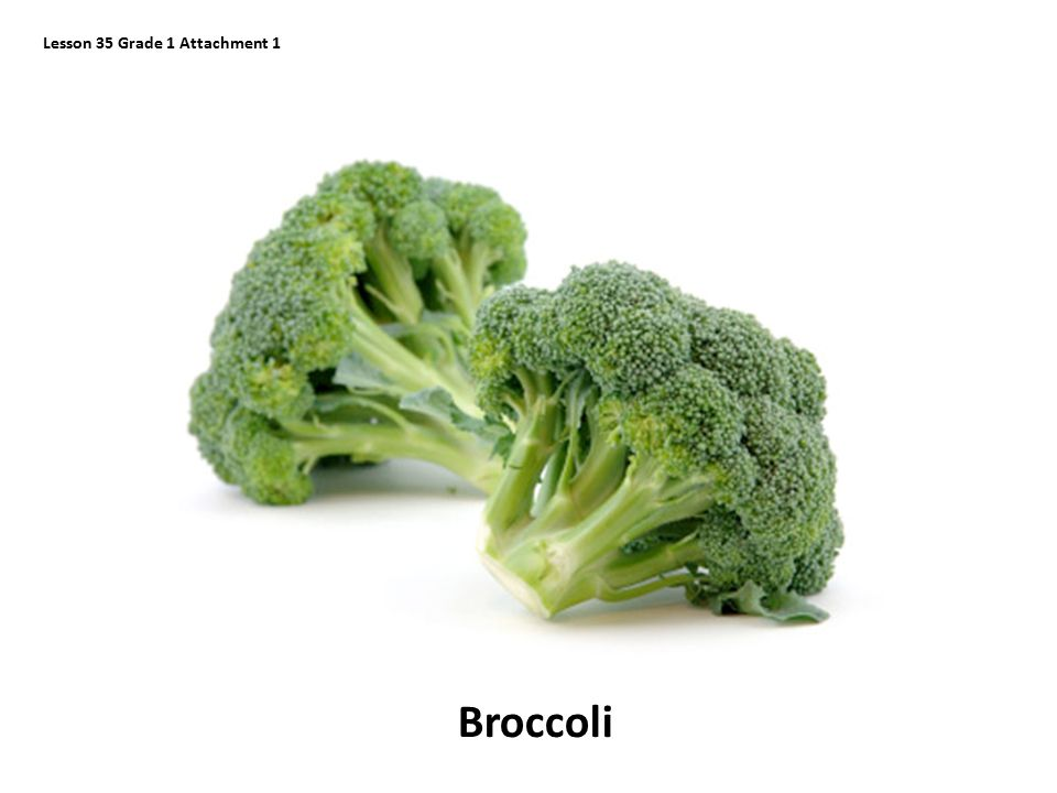 Lesson 35 Grade 1 Attachment 1 Broccoli
