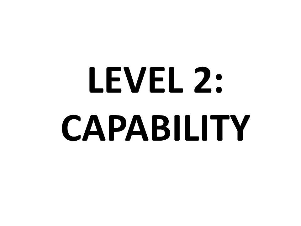 LEVEL 2: CAPABILITY