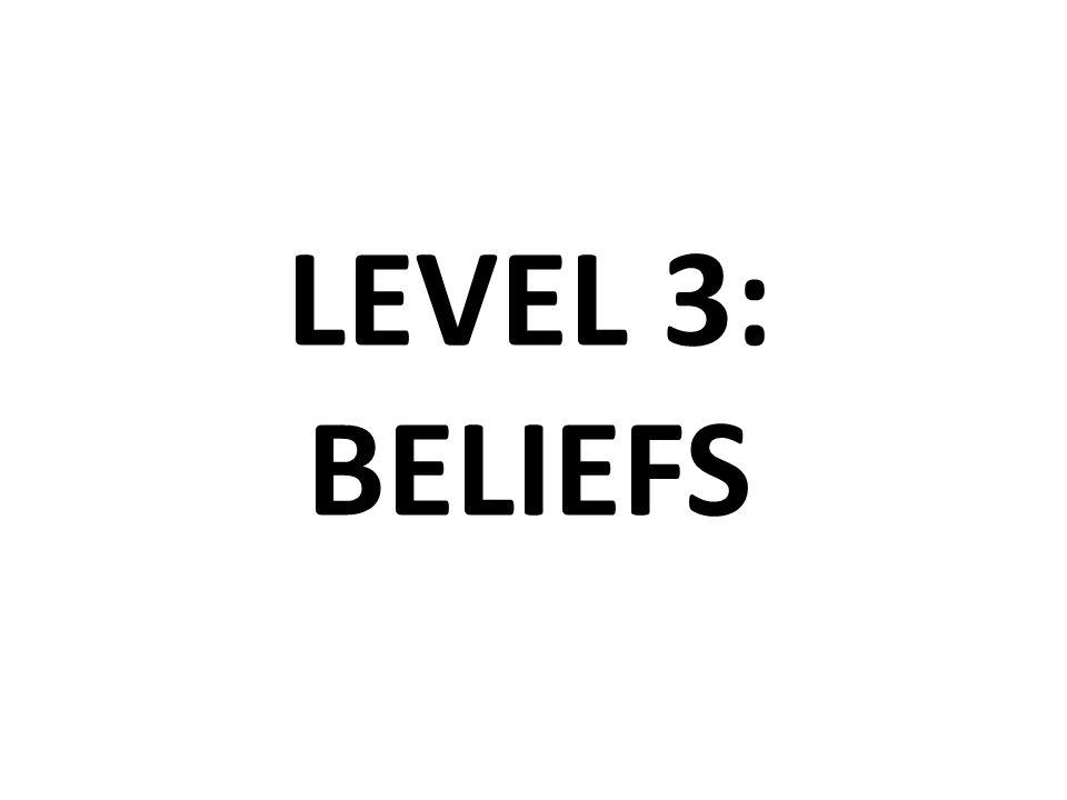 LEVEL 3: BELIEFS