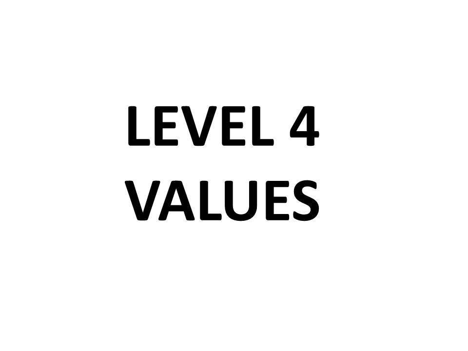 LEVEL 4 VALUES