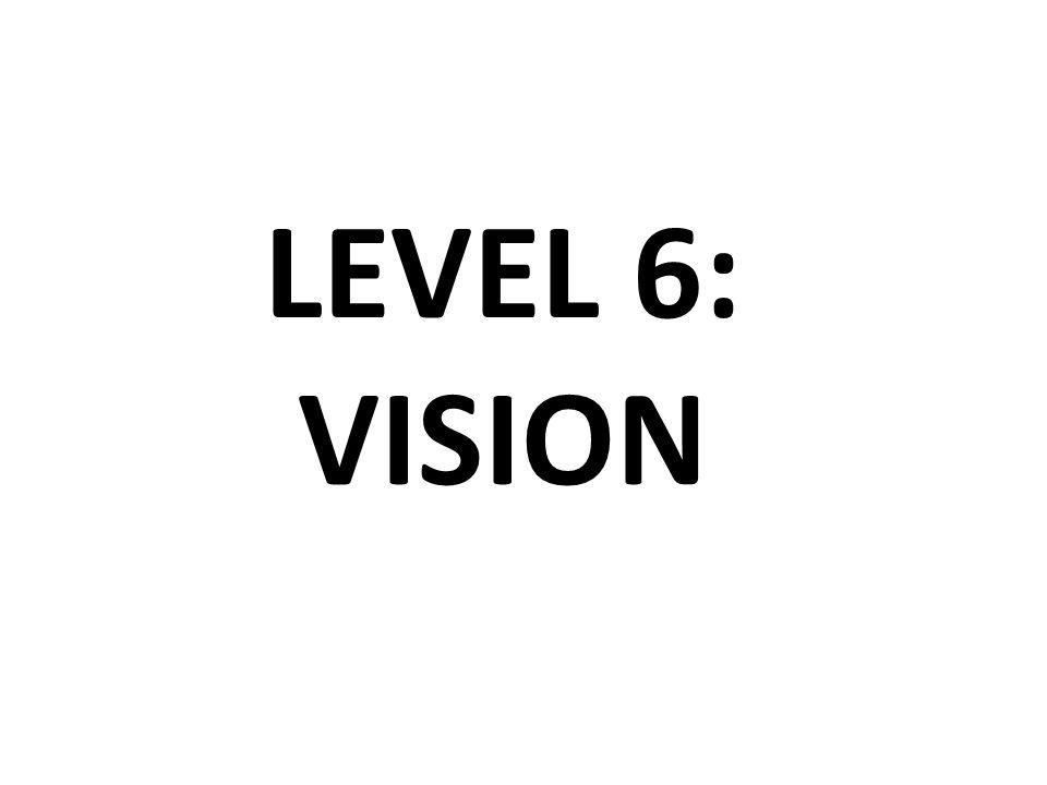LEVEL 6: VISION