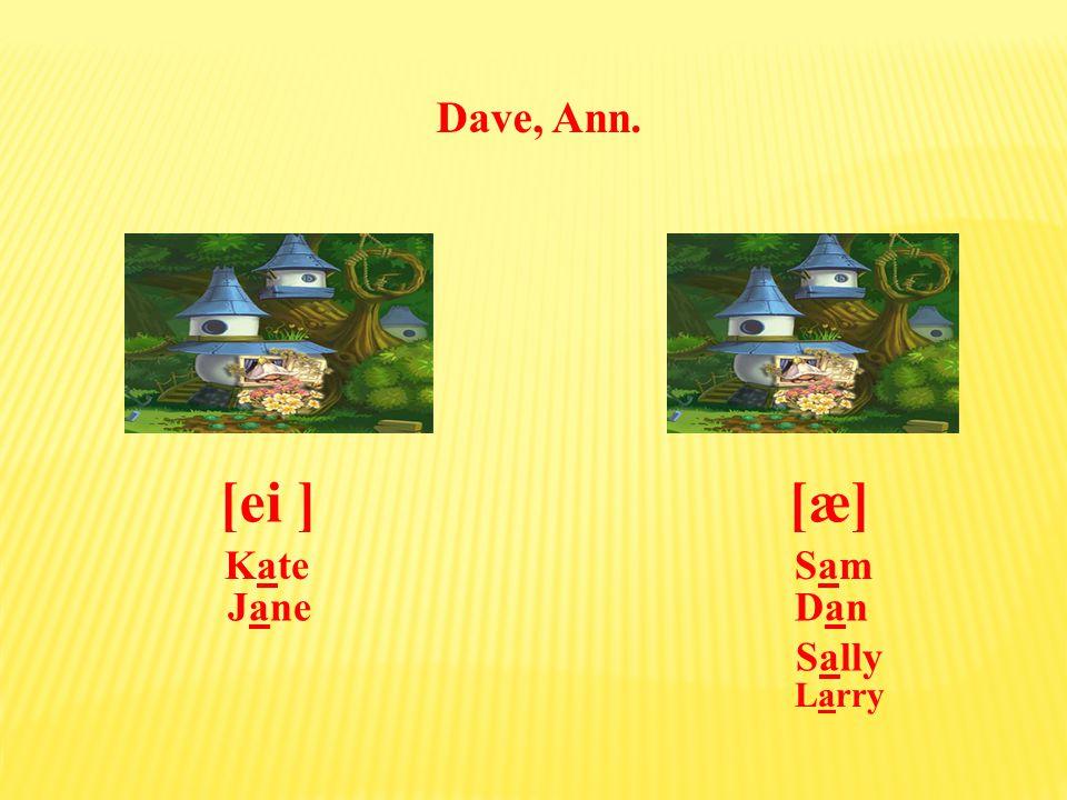 Larry, Dave, Ann. [æ][ei ] SamKate Dan Sally Jane