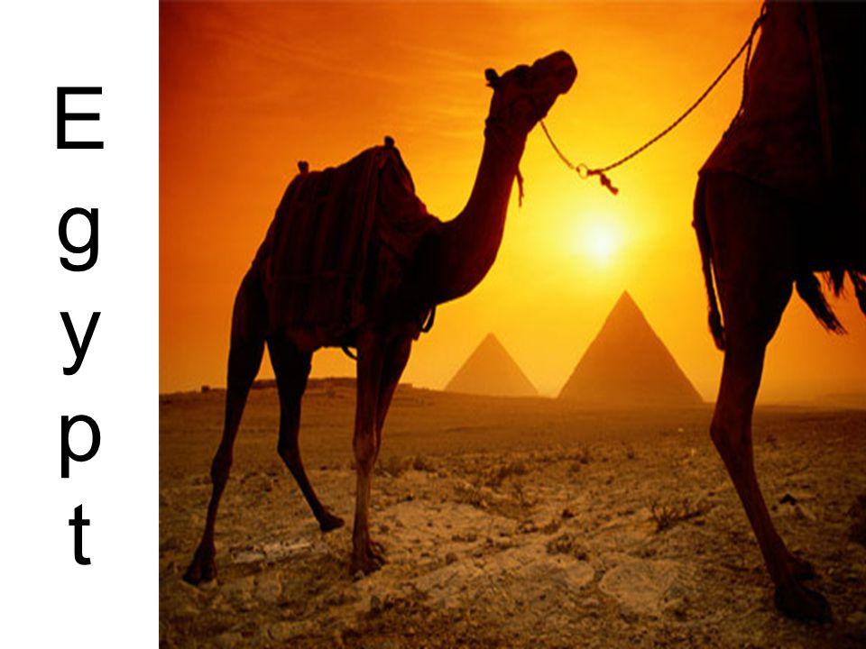 EgyptEgypt
