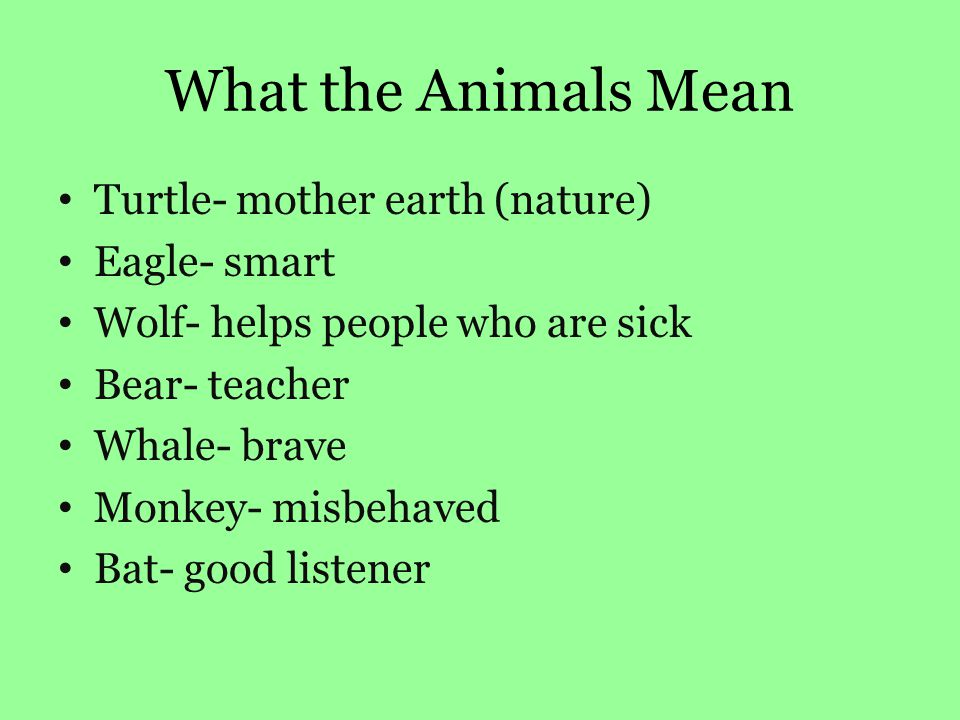 What the Animals Mean Turtle- mother earth (nature) Eagle- smart Wolf- helps people who are sick Bear- teacher Whale- brave Monkey- misbehaved Bat- good listener