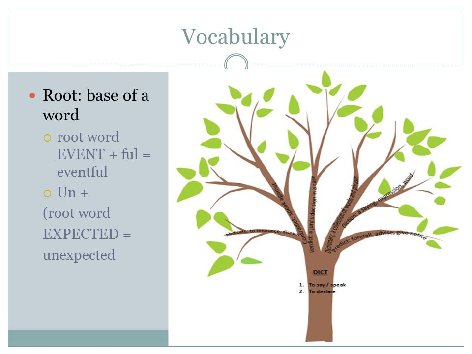 Vocabulary Root: base of a word  root word EVENT + ful = eventful  Un + (root word EXPECTED = unexpected