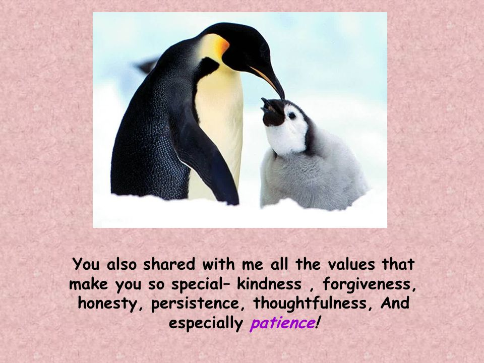 You also shared with me all the values that make you so special– kindness, forgiveness, honesty, persistence, thoughtfulness, And especially patience!