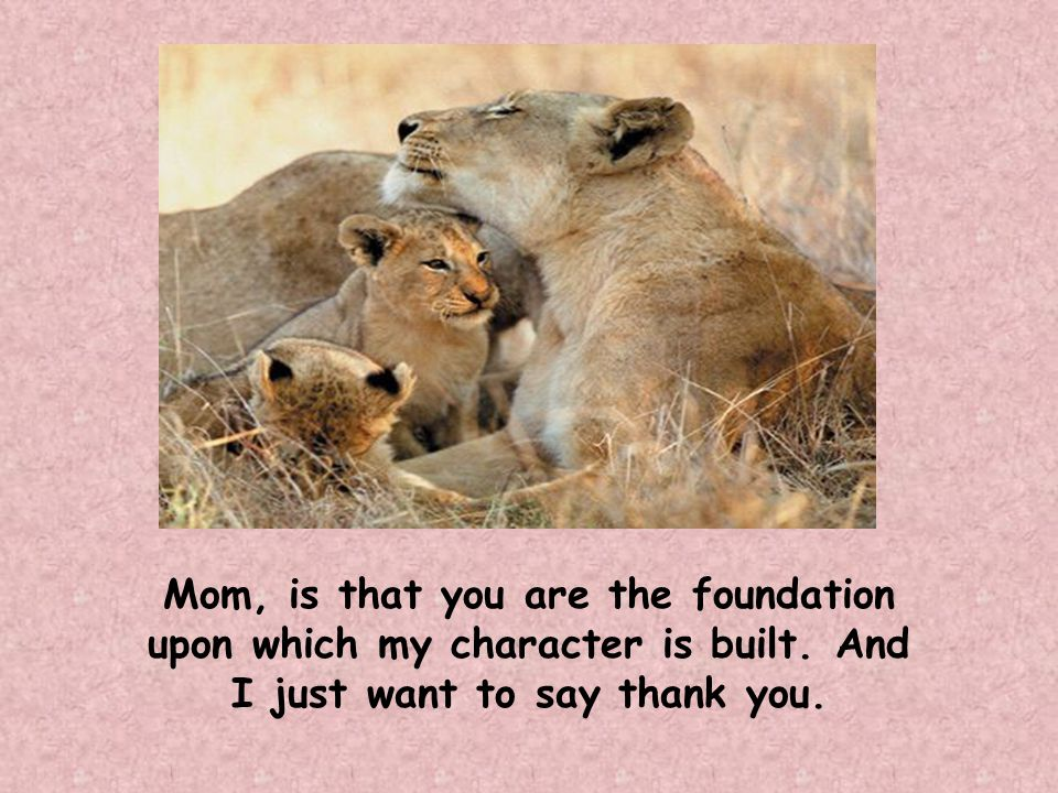 Mom, is that you are the foundation upon which my character is built.