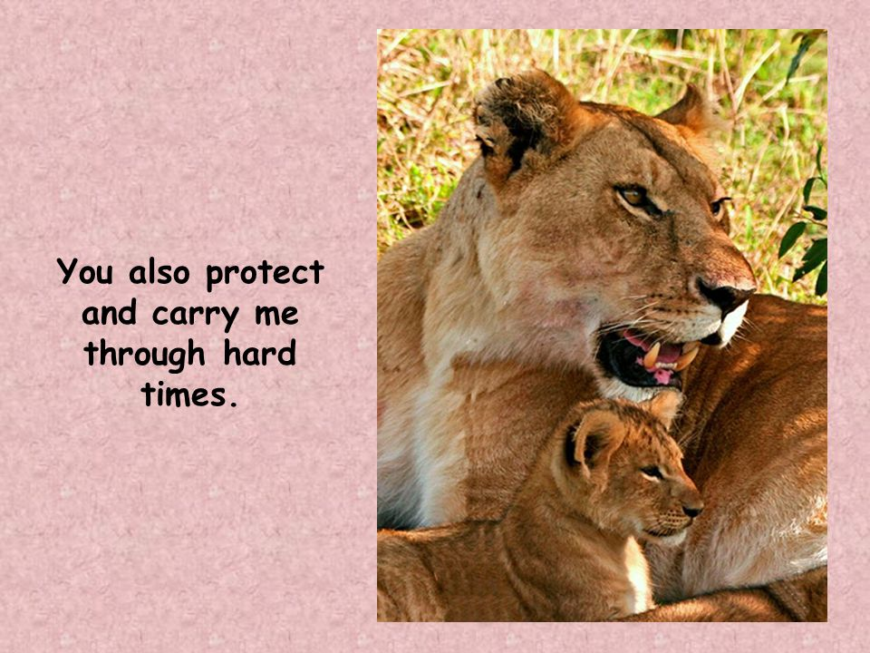You also protect and carry me through hard times.